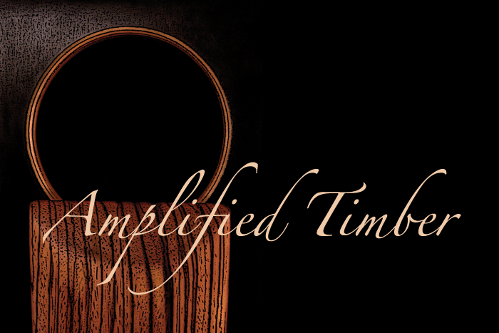 amplified timber logo